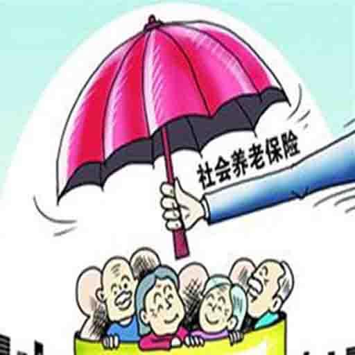养老保险待遇领取资格网络认证解决方案